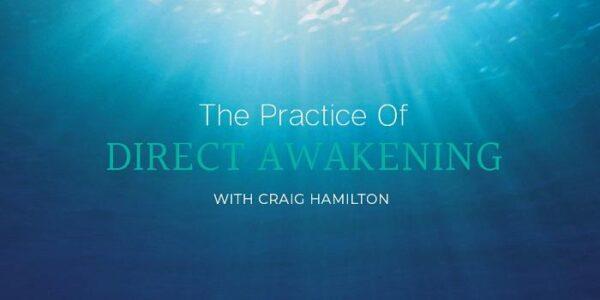 craig-hamilton-practice-direct-awakening